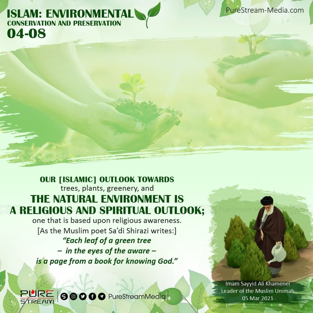 Our [Islamic] outlook towards trees…